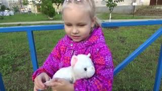 Как Алиса ходит на развивающие занятия ВЛОГ для детей