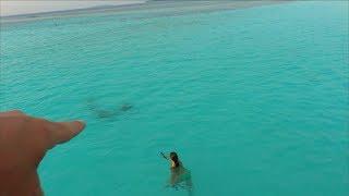 Мама Плавает с АКУЛАМИ. Вика Первый Раз Катается На Водных Мотоциклах