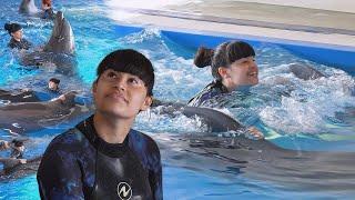 Диана Анкудинова новый заплыв с дельфинами