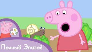 Свинка Пеппа - S02 E21 Крошки букашки
