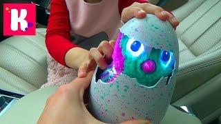 ВЛОГ Коктейли из шоколада M&Ms Катя принимает роды у яйца Макс едет на День Рождение одноклассника