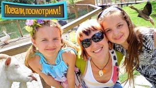 На ферме с животными (ВДНХ) - Видео для детей