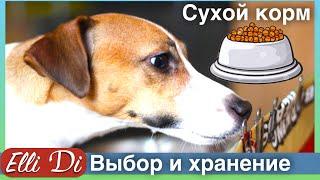 Сухой корм для собак - как выбрать и хранить корм? Уход за собакой с .