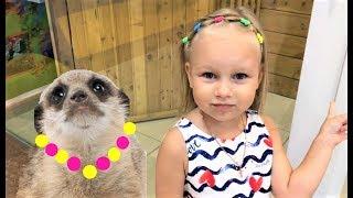 Алиса кормит СУРИКАТОВ в зоопарке  Алиса растеряла всех ГУСЕНИЦ  Контактный зоопарк для детей