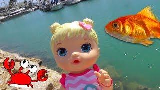 Куклы путешественницы, кормим рыбок, следим за крабами и муравьями