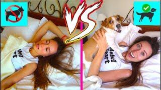 Жизнь с Cобакой VS Жизнь без Cобаки - Elli Di Pets