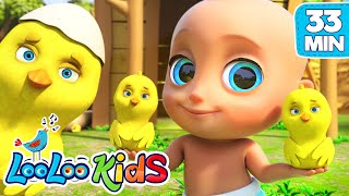 Little Chicks Johny Johny Yes Papa LooLoo KIDS Nursery Rhymes and Childrens Songs