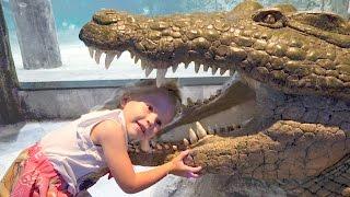Видео для детей Настя едет в Самый Лучший Океанариум Развлечения для детей Влог Funny video for kids