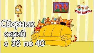 Три кота - Сборник с 36 - 40 серии