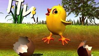 Смешная детская песня с смешным цыпленком