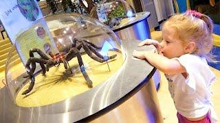 Детский музеи науки Развлечения для детей Развивающее видео Childrens Museum Kids Pretend Play