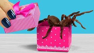 Коробочка с сюрпризом. 9 пранков для пары к дню Святого Валентина