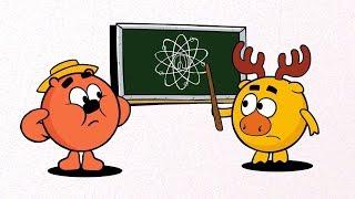 Наука для детей - Что это такое? Метод магнитно-резонансной томографии Смешарики Пинкод-Вредитель