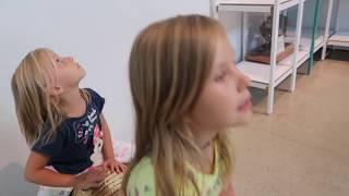 Динозавр НАПАЛ на Папу и Николь. Парк развлечений для детей