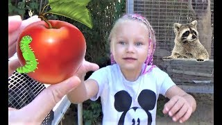 Алиса кормит ЕНОТА  Мини зоопарк для детей  Alice feeds the RACCOON  Mini zoo for kids