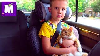 Кошечка Мурка и Макс едут в гости  едем в Киев ДжекПот ЧЕЛЛЕНДЖ и Пушка - Пердушка Миньоны