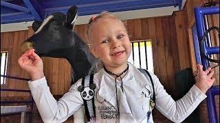 Почему Алиса ездит в коляске Сафари Дубай Классные БЕГЕМОТИКИ и Лемурчики!