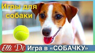 Джина ИГРАЕТ В СОБАЧКУ.