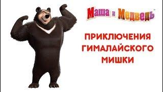 Маша и Медведь: Приключения Гималайского Мишки