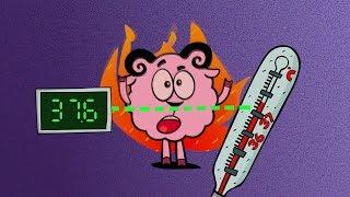 Наука для детей - Температура тела. Крионика  Смешарики Пинкод - Перемотка