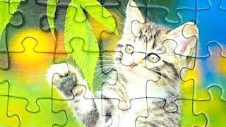 Пазлы для детей с котиками. Учимся собирать пазл