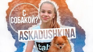 AskAdushkina #8 С СОБАКОЙ?