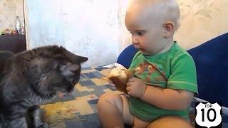 Приколы с детьми и котами - смешные видео