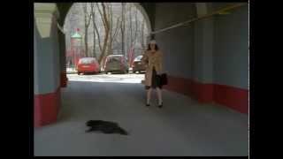 Ералаш 241 Чёрная кошка