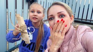 ШОК Алиса НАШЛА СВЁРТОК с ножницами и ЧЁРНЫМИ ВОЛОСАМИ Находка около нашего дома Мими Лисса