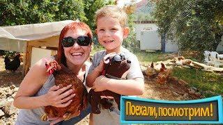 Приключения на ферме: Маша Капуки и курочки