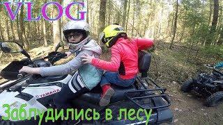Вредные детки Заблудилась в Лесу. Черномор 2018