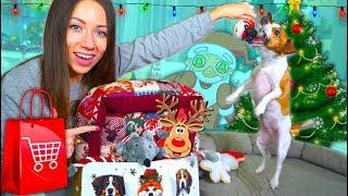 Новогодние Игрушки для Собак Покупки из зоомагазина Обзор и Реакция